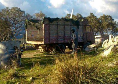 Campo de paintball exterior con camion